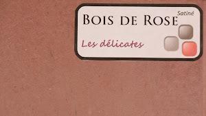 nuancier-les-betons-de-clara-bois-de-rose-collection-les-delications-decoration-interieure-enduit-decoratif.jpg