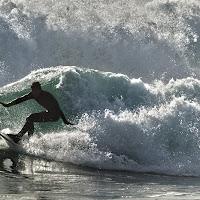 Il surfista di
