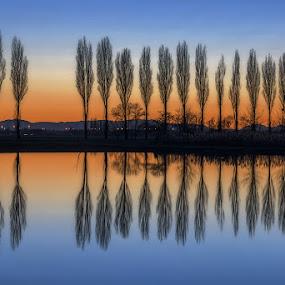 Tranquility by Roberto Melotti - Landscapes Sunsets & Sunrises ( calm, simmetry, reflection, roberto melotti, twilight, reflections, nikon d810, stillness, sedateness, dawn, sunset, trees, tranquility, sunrise, italy )