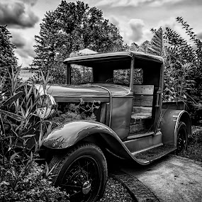 Flower Power by Scott Bryan - Black & White Objects & Still Life ( sky, black and white, truck, dramatic, landscape, garden )