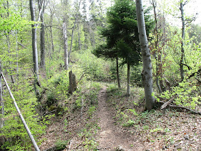Photo: 10.Podejście cały czas lasem i jest dość stromo.