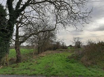 terrain à Doué-la-Fontaine (49)