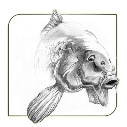Unduh Koi Fish Sketch 30 Apk Comikankoiodieapps Apk Bebas