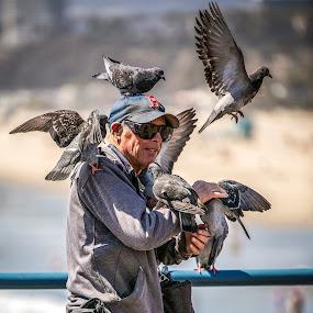 Pigeon Guy at The Pier by Mark Ritter - People Street & Candids ( pigeon, santa monica, pier, urban, candid, street, man )