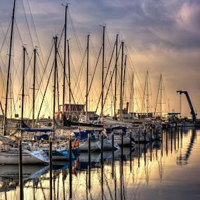 Rise & Shine by Mick Brinkmann - Transportation Boats