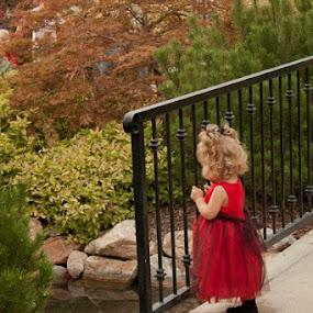 Little Flower Girl by Valerie Aebischer - Babies & Children Children Candids