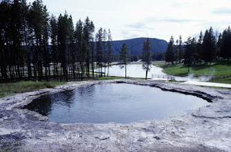 Photo: #023-Yellowstone National Park dans le Wyoming
