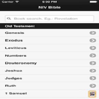 New NIV Bible