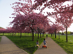 Photo: Promenade au parc urbain (Crédits Hien-Maï T.)