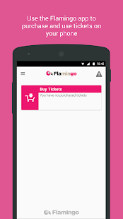 Flamingo Fares Tampa Bay - náhled