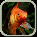 Аквариумные рыбки icon