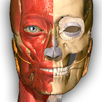 Anatomy Learning - 3D Atlas Icon