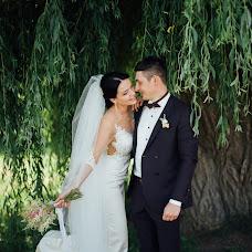 Wedding photographer Sergey Ogorodnik (fotoogorodnik). Photo of 29.11.2017