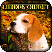 Hidden Object - Autumn Colors