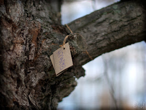 Photo: Special Branch