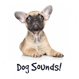 Dog Sounds and Dog Whistle apk