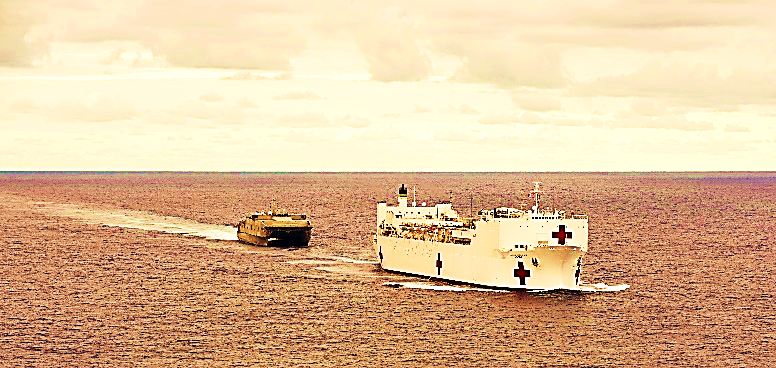 https://upload.wikimedia.org/wikipedia/commons/0/02/The_Military_Sealift_Command_hospital_ship_USNS_Mercy_(T-AH_19)_and_the_Joint_High_Speed_Vessel_USNS_Millinocket_(JHSV_3)_participates_in_Pacific_Partnership_2015_150527-N-BK290-598.jpg