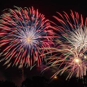 Long's Park Fireworks by Jim Salvas - Public Holidays July 4th ( sky, 4th, starburst, fireworks, independence )