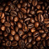Coffee carpet di
