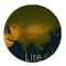 Age of Civilizations Asia Lite file APK Free for PC, smart TV Download
