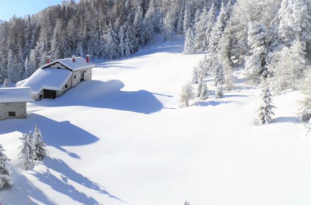 Le casette stupefatte sono bianche come il latte ( cit. Rodari) di laura62