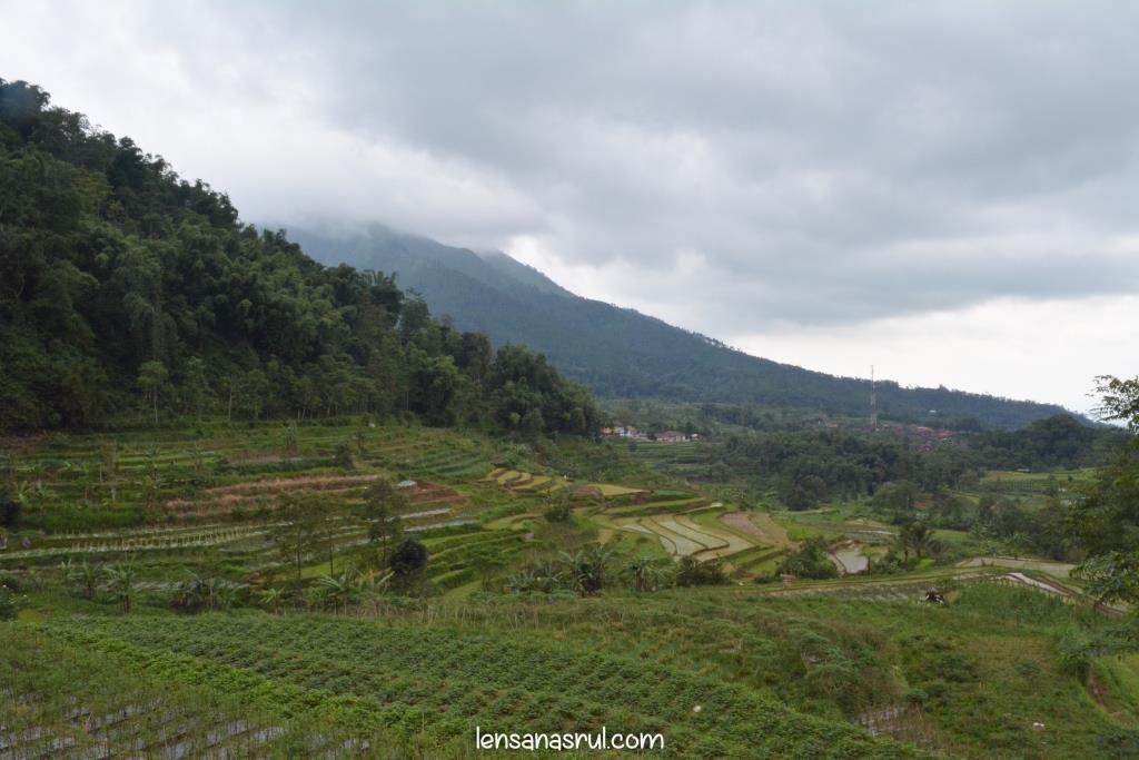 Desa Seloprojo Magelang