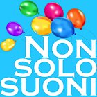 Radio Nonsolosuoni icon
