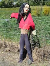 Photo: figure on fence, Motueka valley