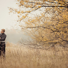 Wedding photographer Olga Mishina (OlgaMishina). Photo of 29.11.2013