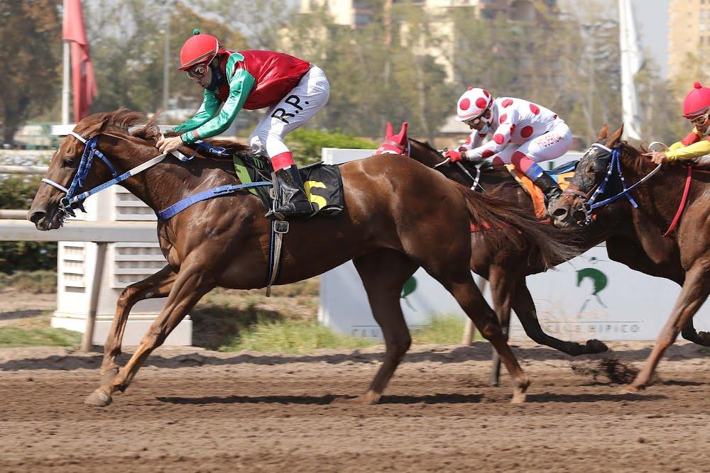 Princesa Sureña (Scat Royal) conquista Condicional (1000m-Arena-CHS).