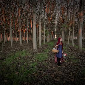 Little Red Riding Hood by Adam Beniston - People Fine Art ( red, riding, little, hood, fairytale )