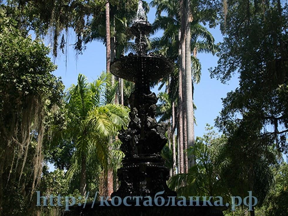 Jardim botânico, Ботанический сад, фавелы, Рио де Жанейро, Rio de Janeiro, Часть 5, КостаБранкаРФ, Brasil, Бразилия