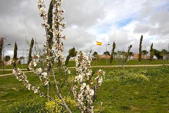 Photo: Alcorcón recibe a la primavera