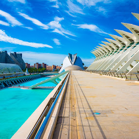 City of Arts and Sciences by Nitescu Gabriel - Buildings & Architecture Public & Historical ( water, building, art, cityscape, architecture, valencia, spain, city,  )