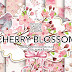 Watercolor CHERRY BLOSSOM digital paper pack Free Download