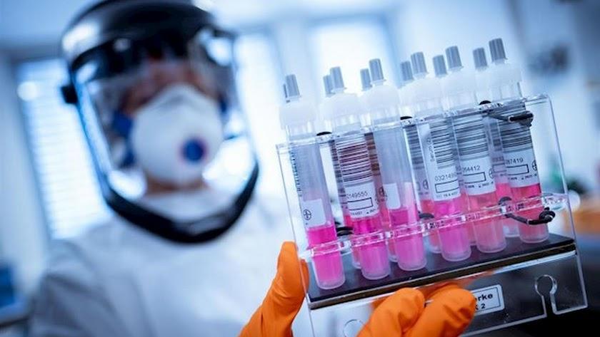 La facultad de Medicina de la Universidad de Pittsburgh ha probado en ratones una posible vacuna que produce anticuerpos.