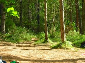 Photo: Camino al Río Mundo