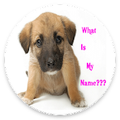 Cute Girl Dog Names App 2017