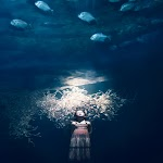 meisje kijkt onder water omhoog naar vissen
