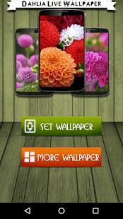 Dahlia Live Wallpaper - náhled