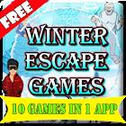 Winter Escape Games icon