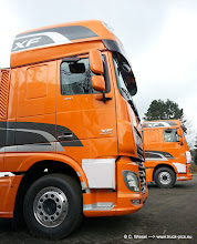 Photo: Die Neuen aus Eindhoven in oranje :-)    >>> www.truck-pics.eu <<<