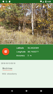 Forest Navigator
