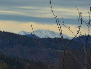 Photo: Buchen sollst Du suchen!? Weder als Knospen beim Knipsen noch als Bäume, wenn's gewittert, ist' ratsam.   ;-) Der Hegerberg beginnt sich zu zeigen, re Gemeindealpe.