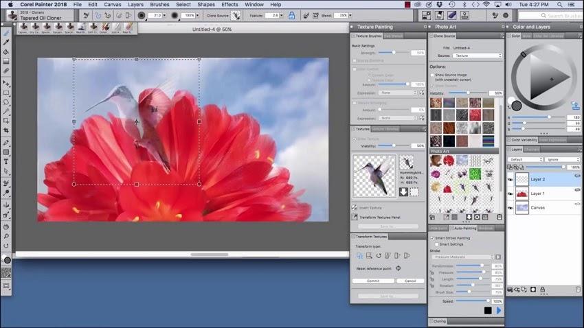 Phần mềm vẽ chuyên nghiệp Corel Painter 2018