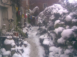 Photo: Carmen's garden on Bridge St always interesting, the heavy dollops of snow giving it an extra makeover.