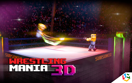 Blocky Wrestle 3D Free Edition 1.1 screenshot 38641