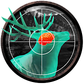 Wild Hunt:Sport Hunting Game. Hunter & Shooter 3D.