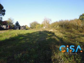 terrain à Dammartin-en-Goële (77)