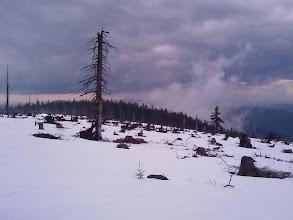 Photo: Zwercheck-Hochebene - freier Blick nach dem Orkan Kyrill (19.1. 2008)